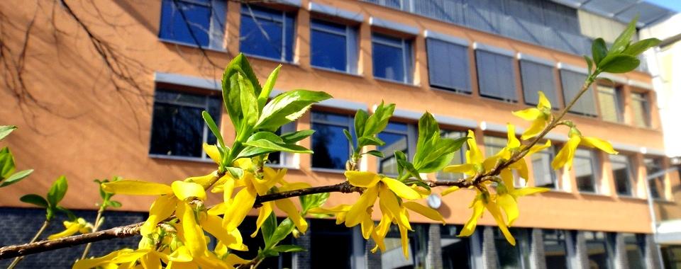 Willkommen am Ritzefeld-Gymnasium